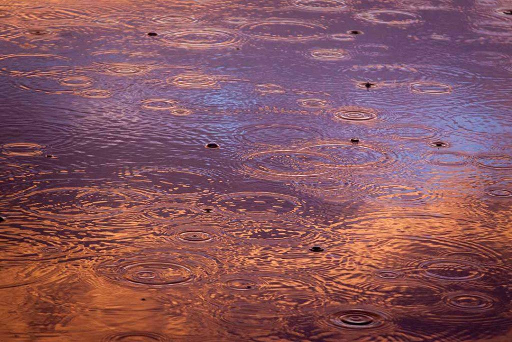 Rain and floods