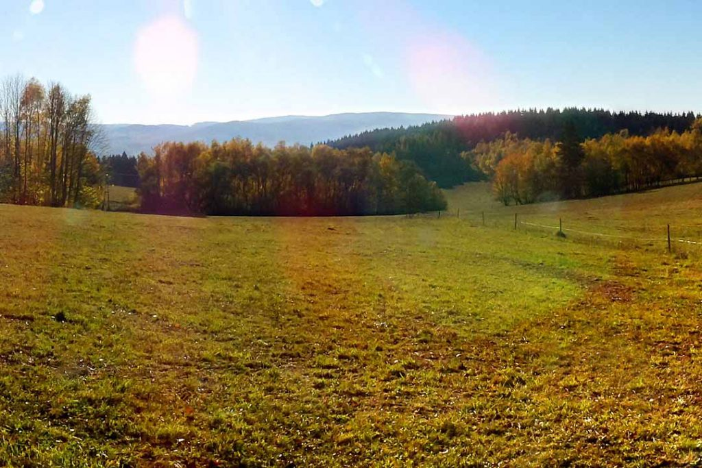 Sumava Mountains in Autumn