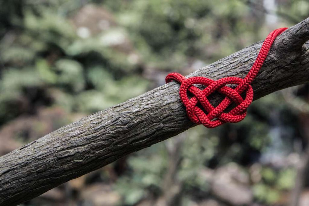 branch with a roped heart knotted around it