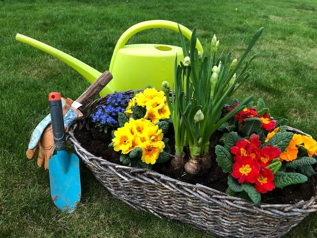 flower basket with watering can and gloves