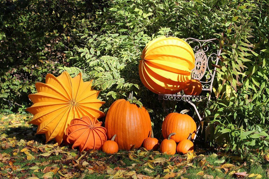 pumpkins and lampions
