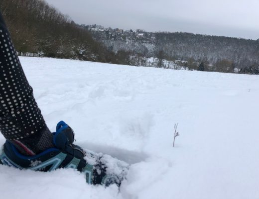 Running shoe in snow